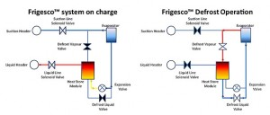 Frigesco system schematic