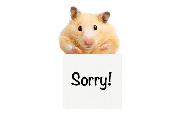Photo of Kelvin apologises