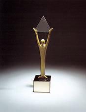 Stevie-award