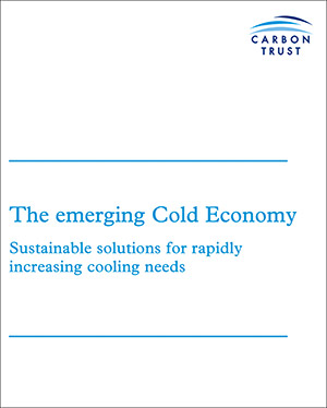 The-emerging-Cold-Economy