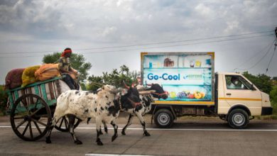 Photo of Fund invests $580,000 in sustainable cooling